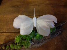 Pillangó betűzős 9,5x5