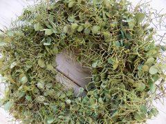 Koszorú ajtódísz, eukaliptusz, páfrány  Ø:38