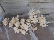 Selyemvirág ág 20x100